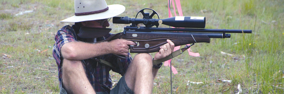 Air-Rifle-Field-Target-header11.jpg#asset:146