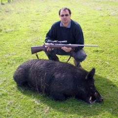 Hunting Wa Pigs
